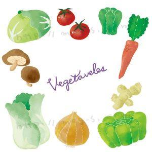 オリジナル 野菜